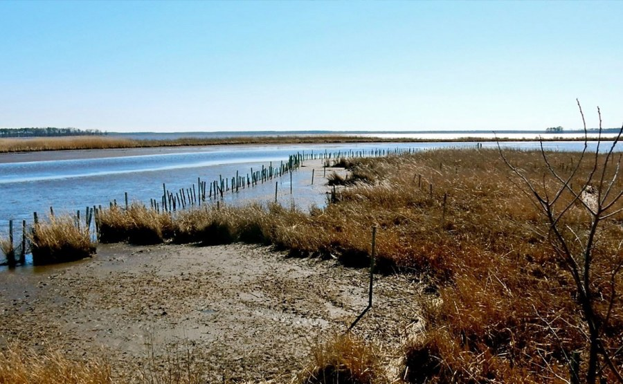 The county's sparse population mostly resides in unincorporated communities, few major roads exist, groundwater is shallow, and over half the land area is federally protected salt marshes, including the 28,000-ac Blackwater National Wildlife Refuge