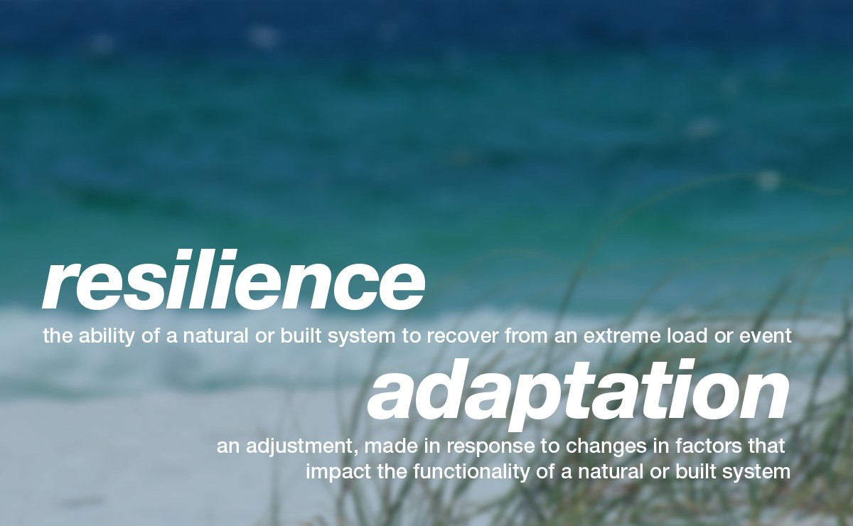 Resilience and Adaptation