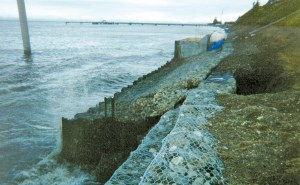 Design and Build of Shoreline Sheet Pile Wall for Groundwater Flow Control